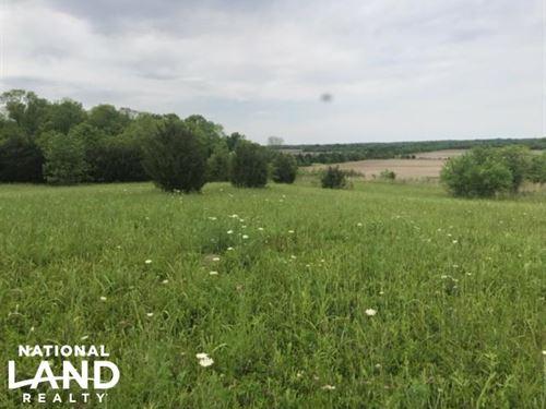 Hwy 45 Deer Hunting OR Development : Okolona : Monroe County : Mississippi