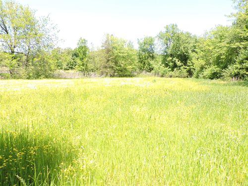 Looking To Build Mini Farm This It : Waldron : Scott County : Arkansas