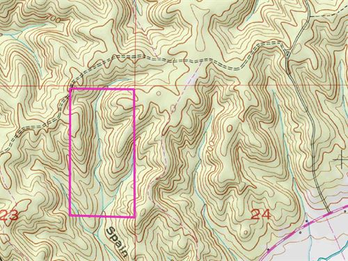 Great Hunting & Mature Timber : Waterloo : Lauderdale County : Alabama