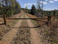 225 Acres Located in Dover, Stewar : Dover : Stewart County : Tennessee