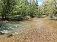 97 Acre Sportsman's Hunting Retrea : Linden : Perry County : Tennessee