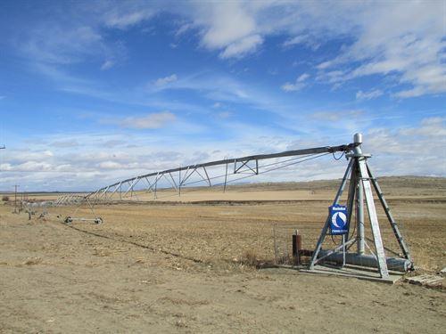 Byron Founder Farm : Byron : Big Horn County : Wyoming