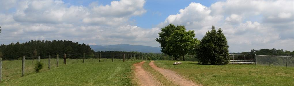 Beautiful Farm, Exceptional Views : Shelby : Cleveland County : North Carolina