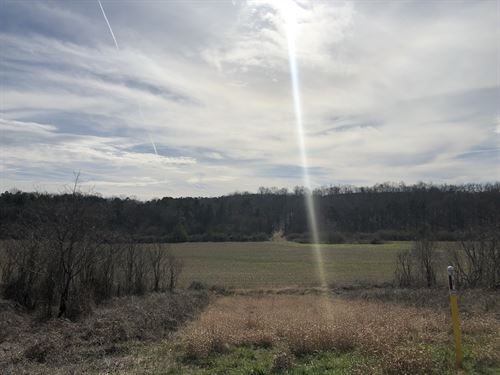 50.69+/- Acres A-1 Bartow County : Kingston : Bartow County : Georgia