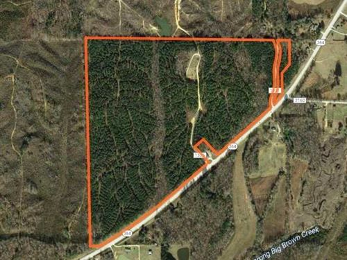 101 Acres Hwy 364 Booneville : Booneville : Prentiss County : Mississippi