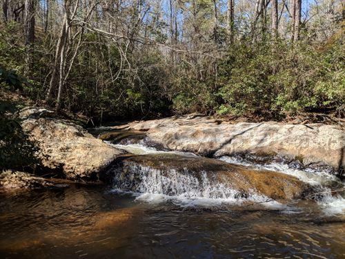 45+/- Acres, Hallman Tract 3 : Ashland : Clay County : Alabama