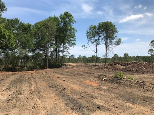 200 Acres Marion County, MS : Foxworth : Marion County : Mississippi
