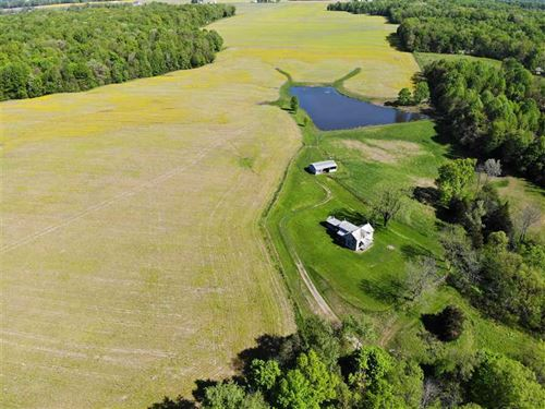 Land For Sale, 131 Acres Decatur : Greensburg : Decatur County : Indiana