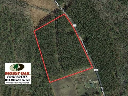 20.4 Acres of Hunting And Timber : New Bern : Jones County : North Carolina