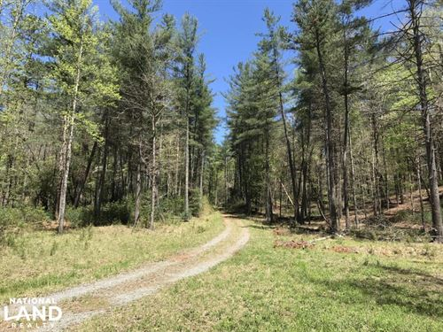 Wilkes County Hunting And Timber Tr : Millers Creek : Wilkes County : North Carolina