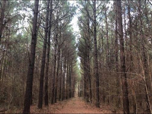 48.86 Acres In Rankin County In Bra : Brandon : Rankin County : Mississippi
