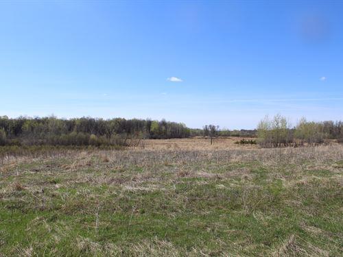 Hunting Land Kanabec County : Milaca : Kanabec County : Minnesota