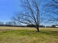 Farm For Sale In Beaufort County Nc : Chocowinity : Beaufort County : North Carolina