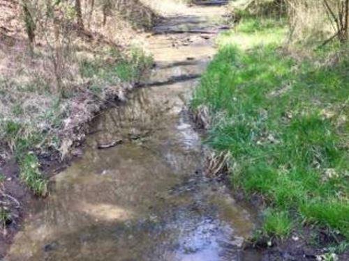 83 Acres Of Paradise : Burkesville : Cumberland County : Kentucky
