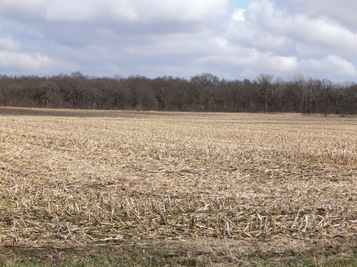 Major Land Auction In Illinois : Beaverville : Iroquois County : Illinois