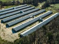 Carroll County Poultry Farm : Carrollton : Carroll County : Georgia