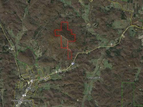 316 Acres For Sale in Wayne County : Piedmont : Wayne County : Missouri