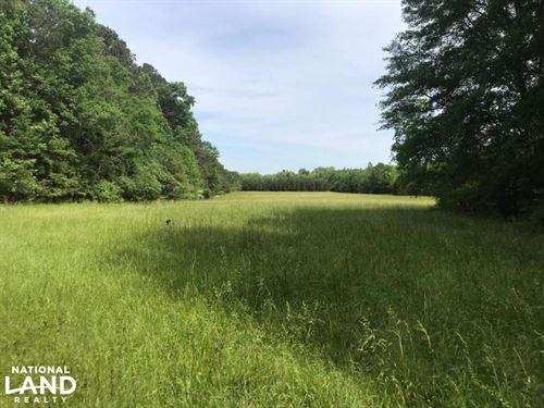 Aberdeen Hunting, Fishing, Farming : Aberdeen : Monroe County : Mississippi