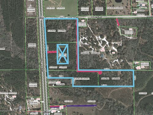 36.98 Acres- N, Hwy 17 : Palatka : Putnam County : Florida