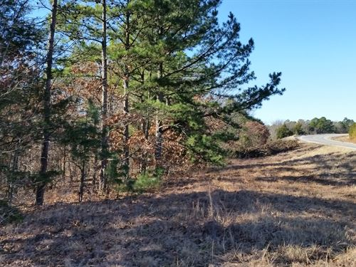 Deer Hunting And Recreational : Wilburton : Latimer County : Oklahoma