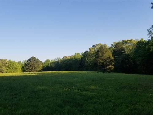 57.6+/- Fields, Woods & Creek : Huntland : Franklin County : Tennessee