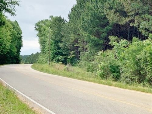 107 Acres Timberland Investment : Poplarville : Pearl River County : Mississippi