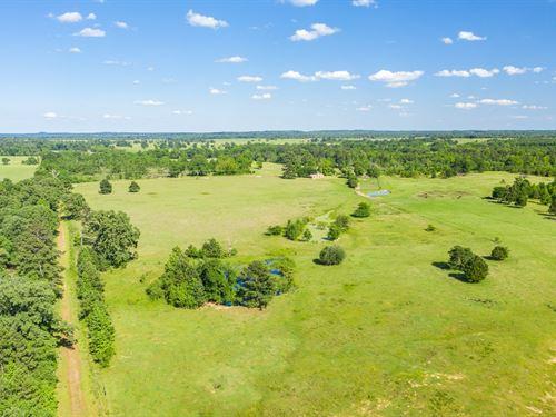 East Texas Land Smith County Winona : Winona : Smith County : Texas