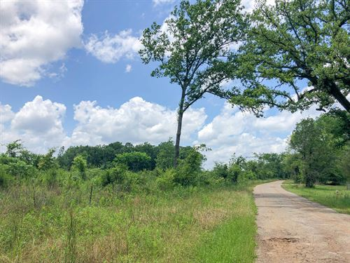 315 Acres Cooke Creek Cr 1214 : Rusk : Cherokee County : Texas