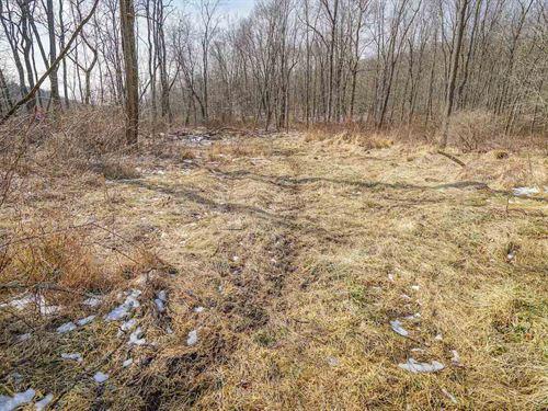 Cullison Rd, 24 Acres : Frazeysburg : Licking County : Ohio