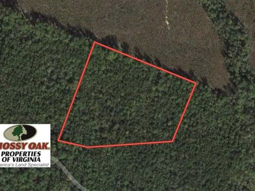8.79 of Timber Land For Sale in Sp : Spotsylvania : Virginia