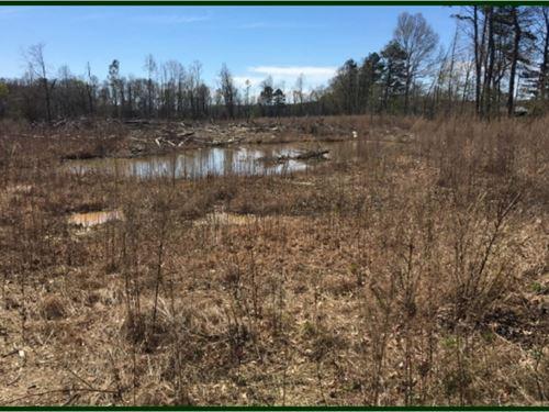 80 Acres In Scott County In Morton : Morton : Scott County : Mississippi