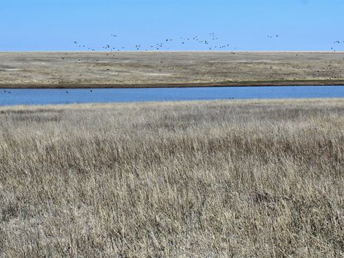 Sold, Grass Pond Sheridan County : Quinter : Sheridan County : Kansas