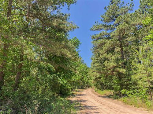 67 Acres Fountain Creek Rd Tr 2102 : Trinity : Texas