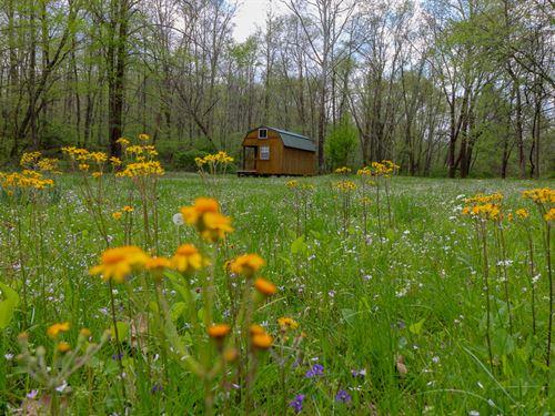 Murphy Remy Rd, 13 Acres : Mc Arthur : Vinton County : Ohio
