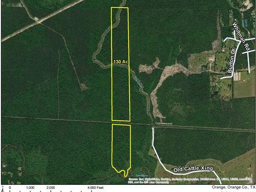 130 Acres Cole Creek : Orange : Texas