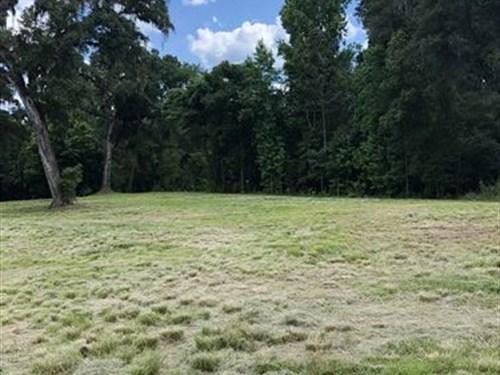 Owner Finance 9.7 Acres Spring Lake : Brooksville : Hernando County : Florida