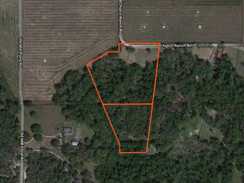 10 Acres, 2 Parcels Owner Financing : Dade City : Pasco County : Florida