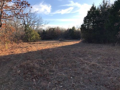 Wooded Acreage, Pond, Buffalo River : Kingston : Madison County : Arkansas