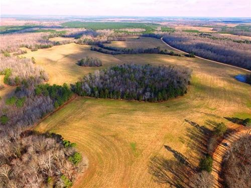 490 Acre Johnson Estate, Lutts, TN : Lutts : Wayne County : Tennessee