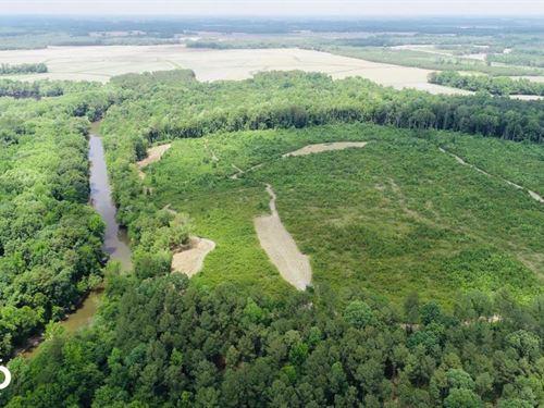 Fishing Creek Hunting Tract : Whitakers : Nash County : North Carolina