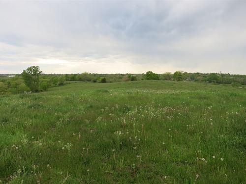 Grass Farm Cattle Grazing Hay : New Hampton : Harrison County : Missouri