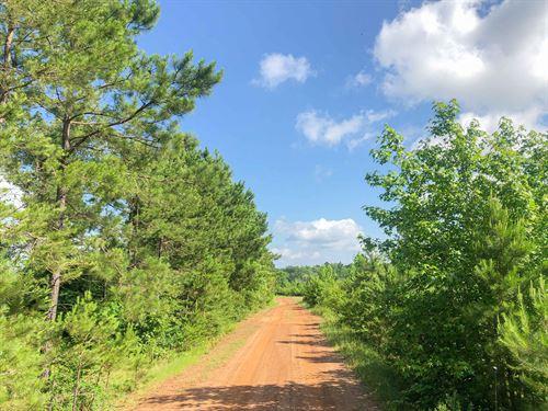 105 Acres Beaver Bend : Gilmer : Upshur County : Texas