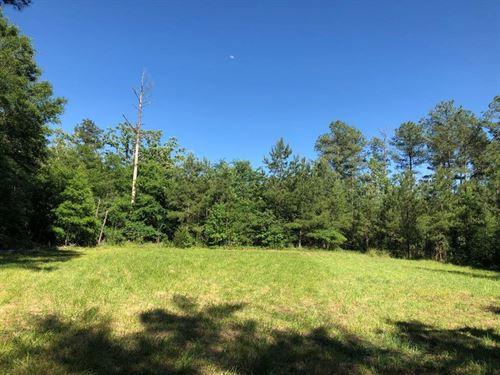 South Fork Little River Tract : Crawfordville : Taliaferro County : Georgia