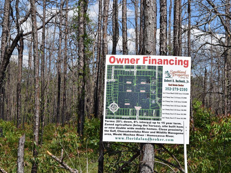 Owner Financing 7 1 Acres : Farm for Sale : Brooksville : Hernando County :  Florida