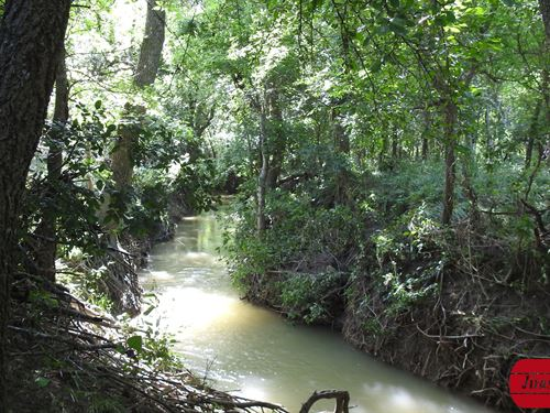 58+ Acres On Little Elm Creek : Temple : Bell County : Texas