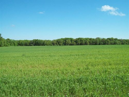 Tillable Farm Land Hunting Warren : Jonesburg : Warren County : Missouri