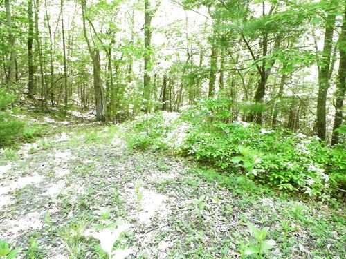 Land In Bland Co, Va, 7.57 Acres : Bland : Virginia