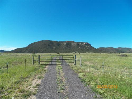 Rare Find In Southern Colorado : Aguilar : Las Animas County : Colorado