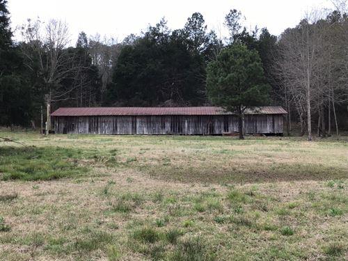 68 Acres +/- Bibb County, Al : Centreville : Bibb County : Alabama