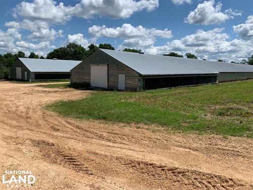 Chicken Farm Near Wesson Mississipp : Wesson : Copiah County : Mississippi